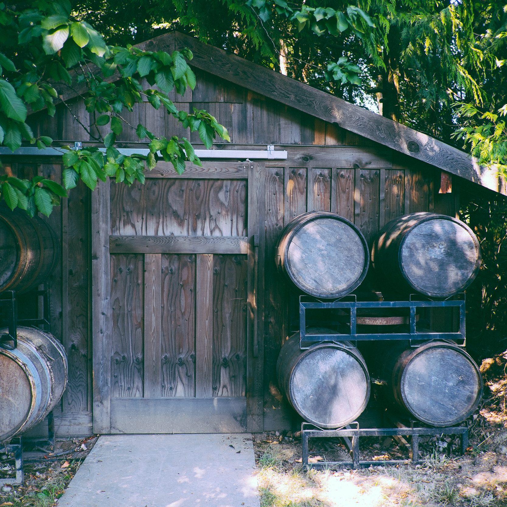 Weinscheune in Portugal mit Weinfässern
