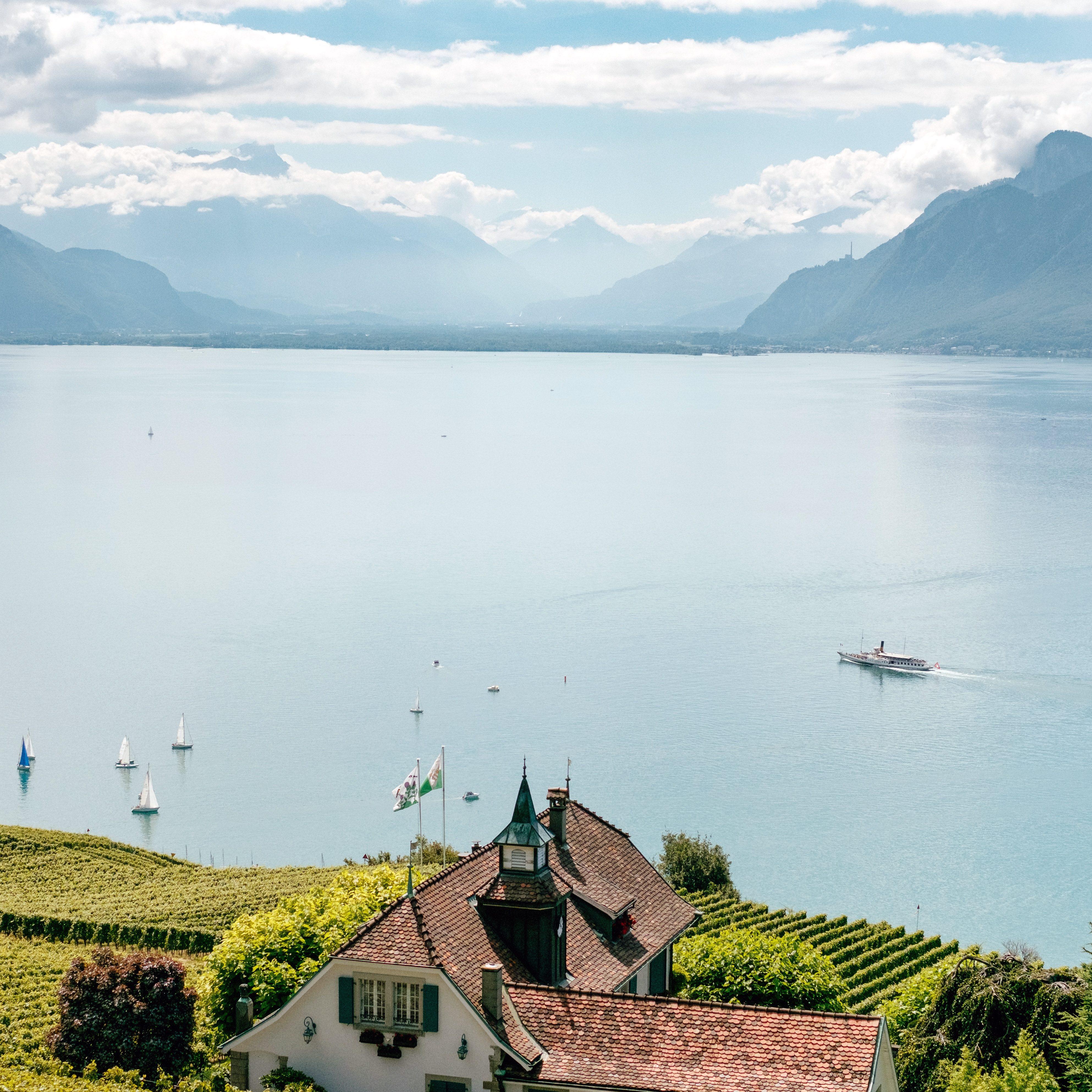 Österreiche Landschaft an einem See mit Weinbergen und Bergen am Horizont